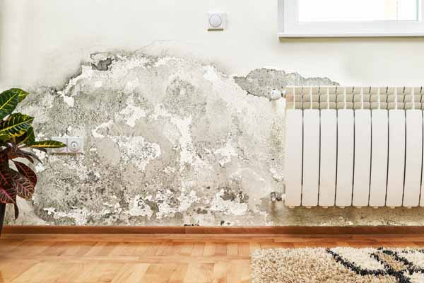 Expert mold inspection for your Dublin Ohio home or property